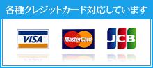 クレジットカード Suica、PASMO、スルガ銀行のデンタルローンも扱っております。